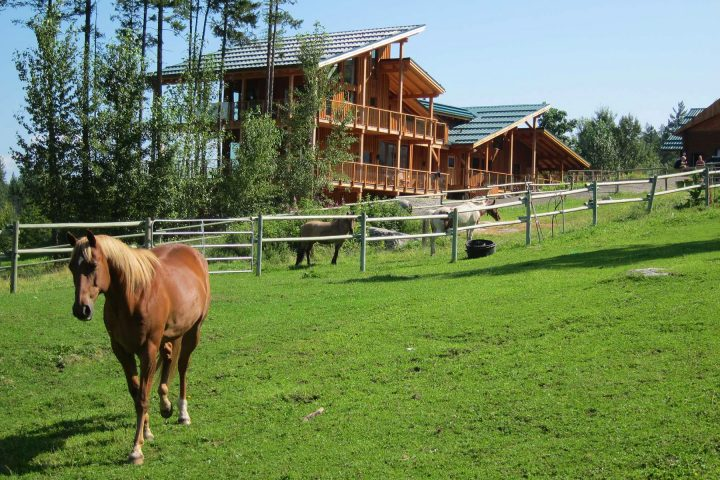 Myra Canyon Ranch mit Pferd