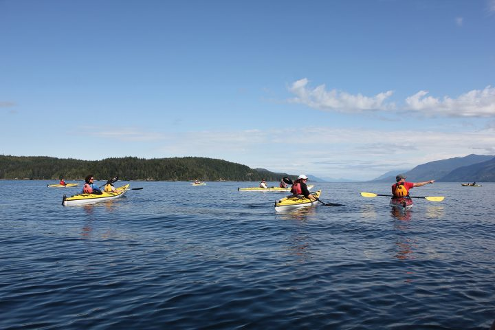 Kajakausflug vom Orca Camp